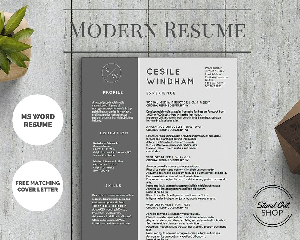 cesile windham resume template