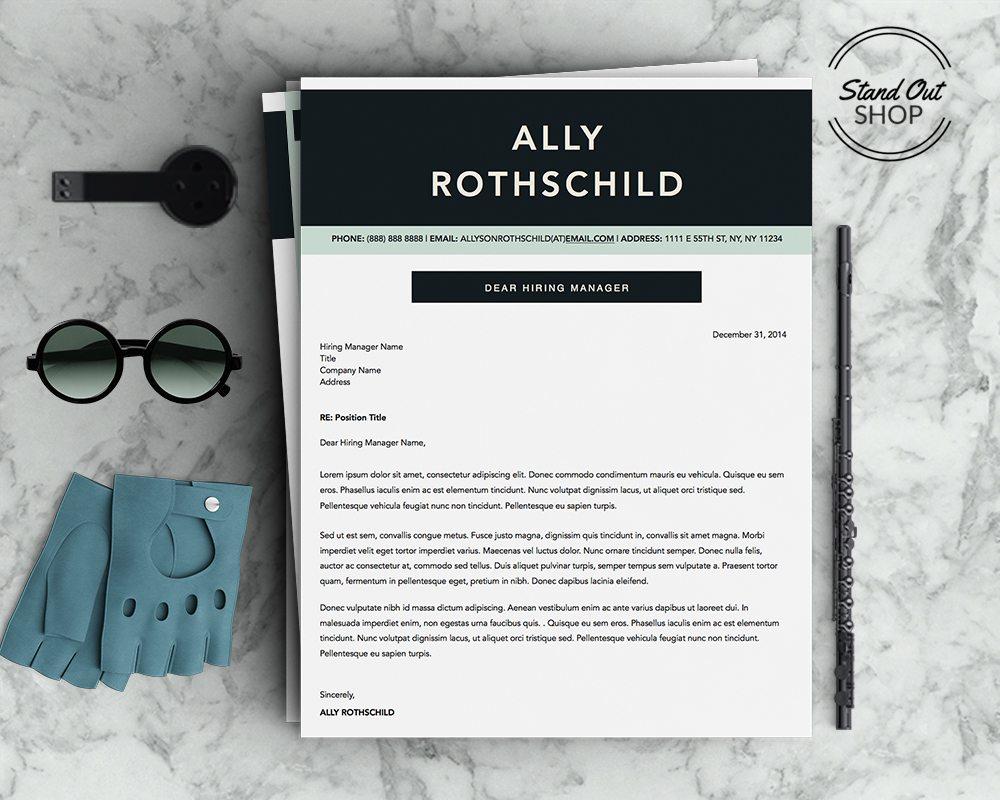 ally rothschild resume 5 pack