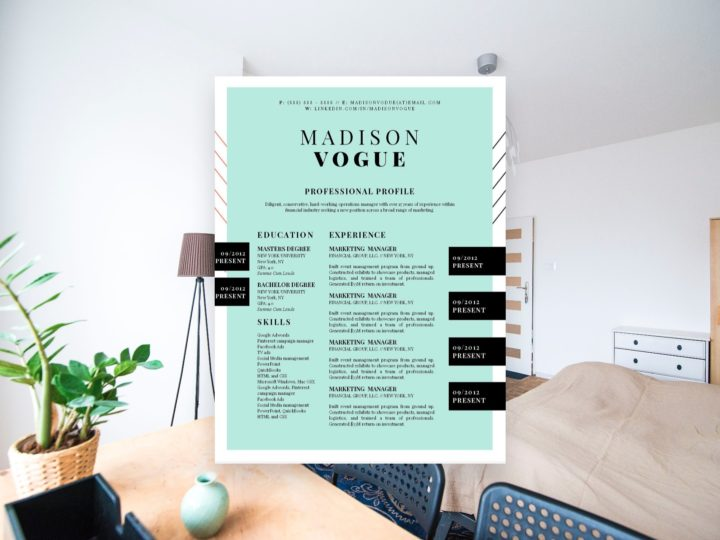 15 Best Creative Resume Templates of 2018