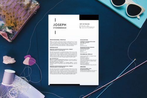 5 Best Clean Resume Templates Word of 2019