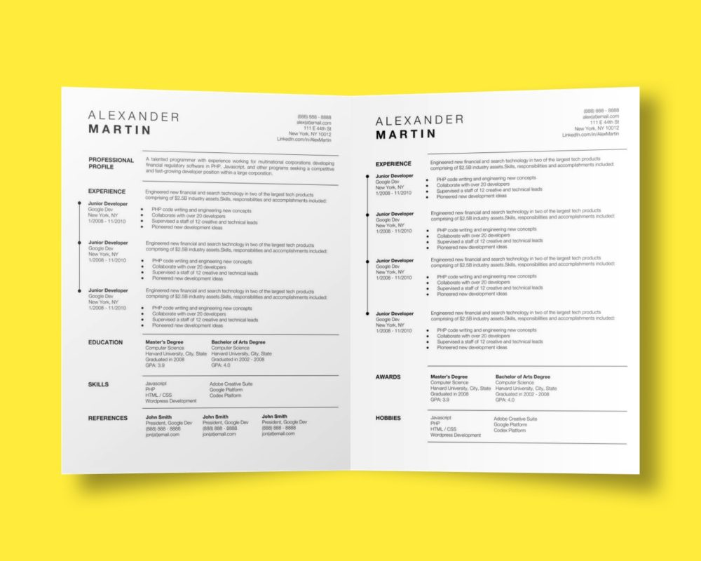 Alexander Martin Google Docs CV Resume Template Stand Out Shop